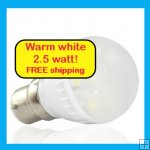 Small LED light globe Warm white