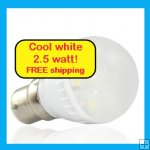 Small LED light globe Cool white